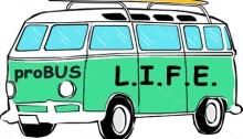 proBUS VW bus