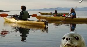 Sunset Kayak
